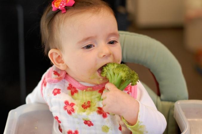 gvsbroccoli