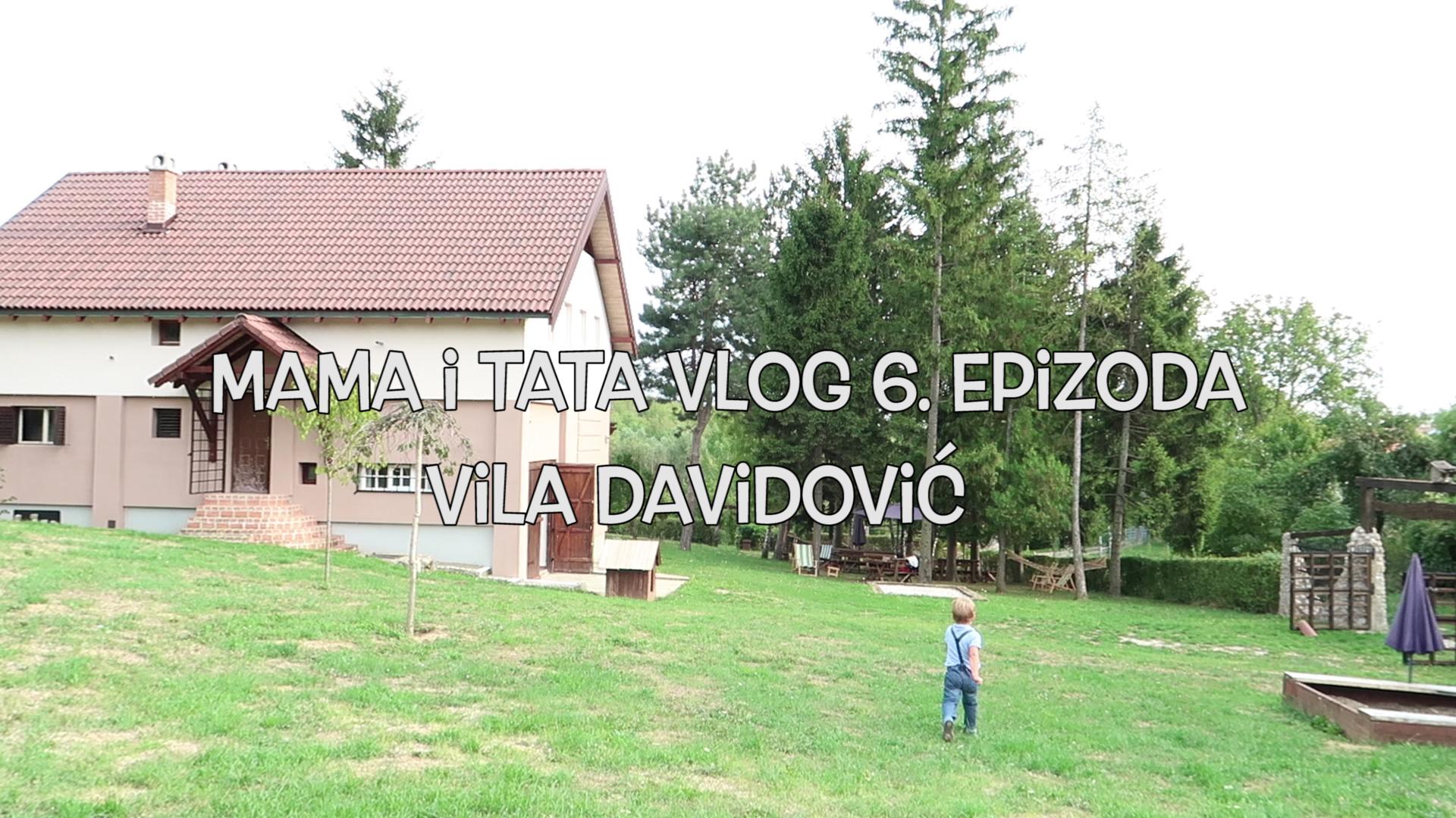 vila Davidovic